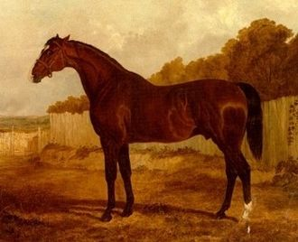 Blacklock (horse) - Blacklock in Landscape by John Frederick Herring