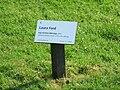 Blickachsen-7--06-laura-ford-hg-001.jpg