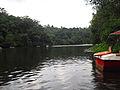 Boat in Pookode Lake.JPG