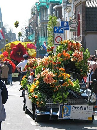 Duin- en Bollenstreek - Scene at the annual flower parade