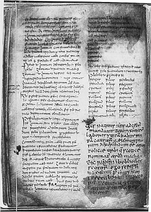 Book of Armagh - A page of text from the Book of Armagh.