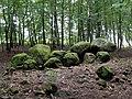 Borkowo - grób megalityczny 01.jpg