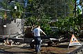Botanischer Garten der Universität Zürich - Erneuerung Schauhäuser 2012-10-19 13-52-41.JPG