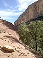 Boynton Canyon Trail, Sedona, Arizona - panoramio (86).jpg