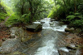Brahmagiri Wildlife Sanctuary - Brahmagiri River passing through Brahmagiri Wildlife Sanctuary