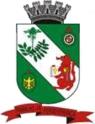 Brasaorionegro.png
