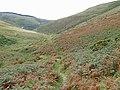 Bridleway descending Cwm Gwrach, Powys - geograph.org.uk - 1531458.jpg