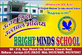 Bright Minds School @ bidhuna Sticker RGB sen.jpg