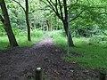 Broxbourne Common - geograph.org.uk - 825768.jpg