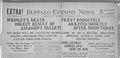 Buffalo Evening News, Theodore Roosevelt Inaugural National Historic Site, 1901. (741b9e3281b2436ab432830006e7272c).jpg