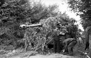 Three men conduct maintenance on a tank; the tank is partially obscured by bushes, which its gun barrel protrudes through.