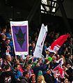 Bundesliga FC Red Bull Salzburg gegen SV Grödig 14.JPG
