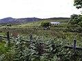 Bunnaton More - geograph.org.uk - 1919639.jpg
