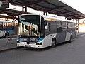 Bus station, T-bus (PLM-462), 2019 Tatabánya.jpg