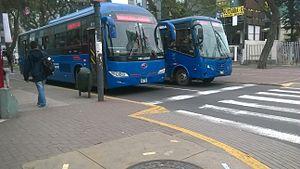 Buses en la avenida Arequipa