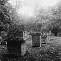 COLLECTIE TROPENMUSEUM Begraafplaats met waruga's te Sawangan TMnr 10028513.jpg