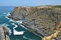 Cabo Sardão ao largo do Farol.jpg