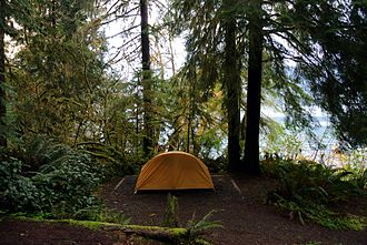 Quinault Rainforest - Camping site on the shores of Lake Quinault