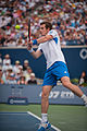 Canada 2010 Andy Murray Backhand (1).jpg
