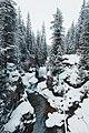 Canyon del Travignolo.jpg