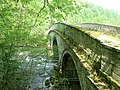 Castle Bridge, Downton Estate - geograph.org.uk - 797081.jpg