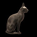 Cat-IMG 6326-black.jpg