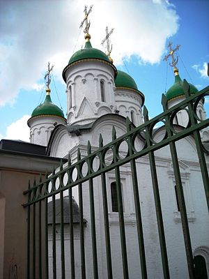 Cathedral of the Presentation of the Vladimir Icon of the Mother of God, 2010 02.jpg, автор: Elisa.rolle