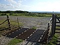 Cattle Grid, north of Dunkeswell, Ashdown Forest, Sussex - geograph.org.uk - 1440299.jpg