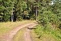 Ceļš, Džūkstes pagasts, Tukuma novads, Latvia - panoramio (3).jpg