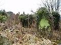 Cemetery, Bwlchgwyn - geograph.org.uk - 153747.jpg
