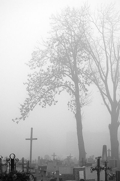 File:Cemetery in fog (335717947).jpg