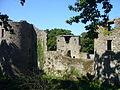 Château de Ranrouet tours et courtines.JPG
