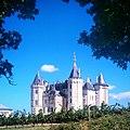 Château de Saumur et ses vignes.jpg