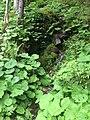 Chamonix, France - panoramio (31).jpg