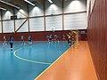 Championnat de France féminin de handball U18 - ENTENTE PAYS DE L'AIN vs LA MOTTE-SERVOLEX (2017-11-12) - 8.JPG