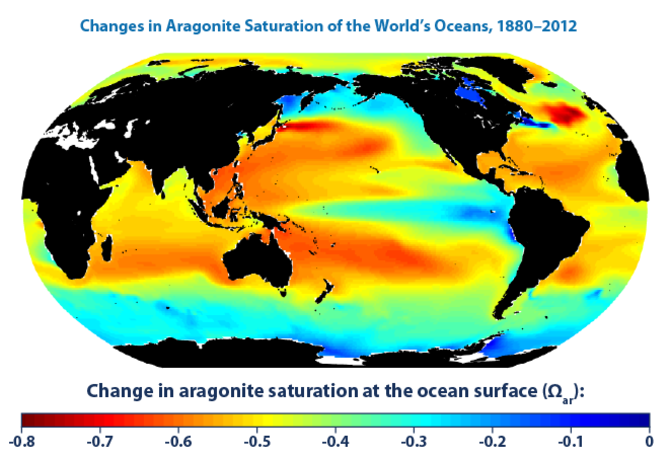 Changes in aragonite saturation of the world's oceans, 1880-2012 (US EPA)