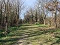 Chemin dans la continuité de l'allée des Ibéris (Neyron) vers le fort.jpg