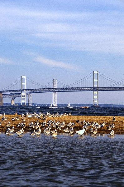 File:Chesapeake Bay Bridge.jpg