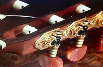 Chitarra corde pioli.jpg