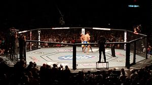 Chris Weidman - Chris Weidman knocking out Anderson Silva at UFC 162.
