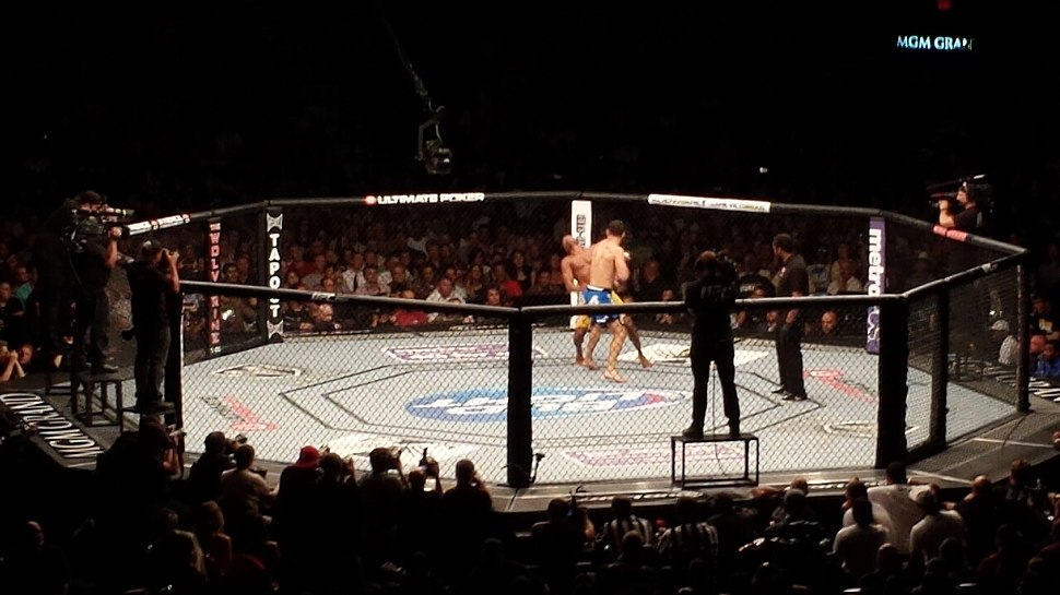 Chris Weidman knock out Anderson Silva at UFC 162.