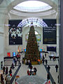 Christmas tree at Dresden Hauptbahnhof (Christmas tree at Dresden Central railway station) - geo-en.hlipp.de - 23159.jpg