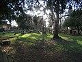 Churchyard of St Martin of Tours, Epsom - geograph.org.uk - 132766.jpg