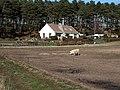 Clinbaht near Lhanbryde - geograph.org.uk - 153021.jpg