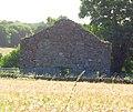 Clone Church - County Wexford, Ireland.jpg