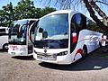 Coaches (18712853652).jpg
