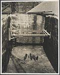 Construction of western skewback for Sydney Harbour Bridge, 1926 (8283760394).jpg