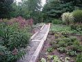 County Farm Park August 2013 24 (Perennial Gardens).jpg