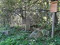 Craulaer Kreuz im Nationalpark Hainich.JPG
