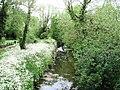Cripsey Brook upstream of Ongar Bridge (geograph 3968521).jpg